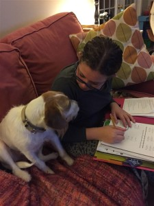 Sandy is helping with homework, a task jacks do well