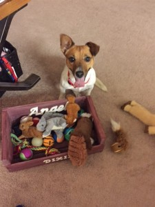 Angel's toy box