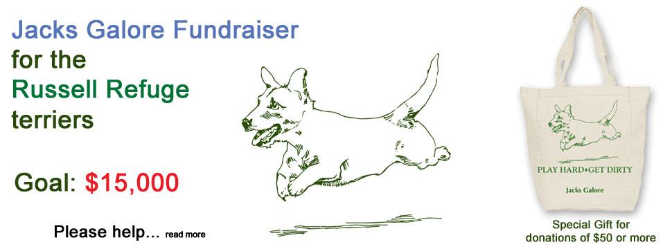 Refuge Fundraiser