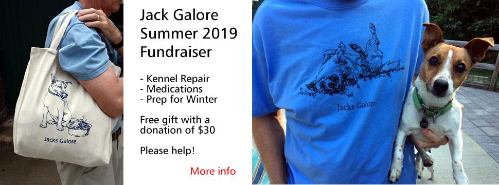 JG 2019 Summer Fundraiser