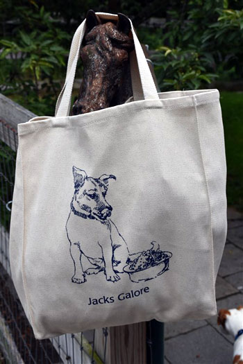 JG Summer Fundraiser Tote Bag