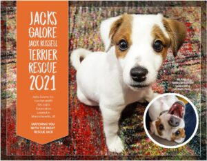 Jacks Galore 2021 Calendar